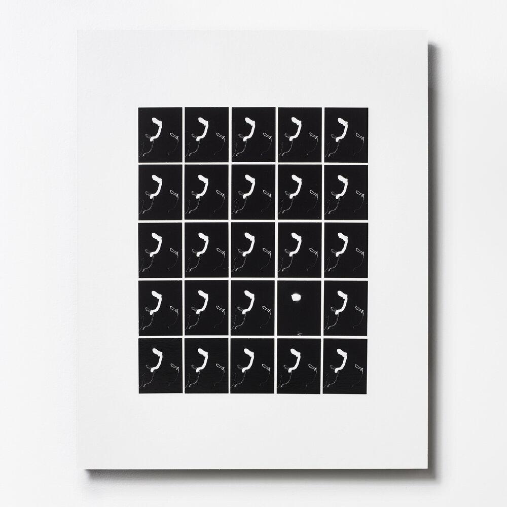 """Multiples 25, Grid #8,"" New York City 2016"