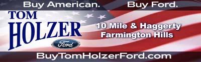 Holzer_Flag_Logo.jpg