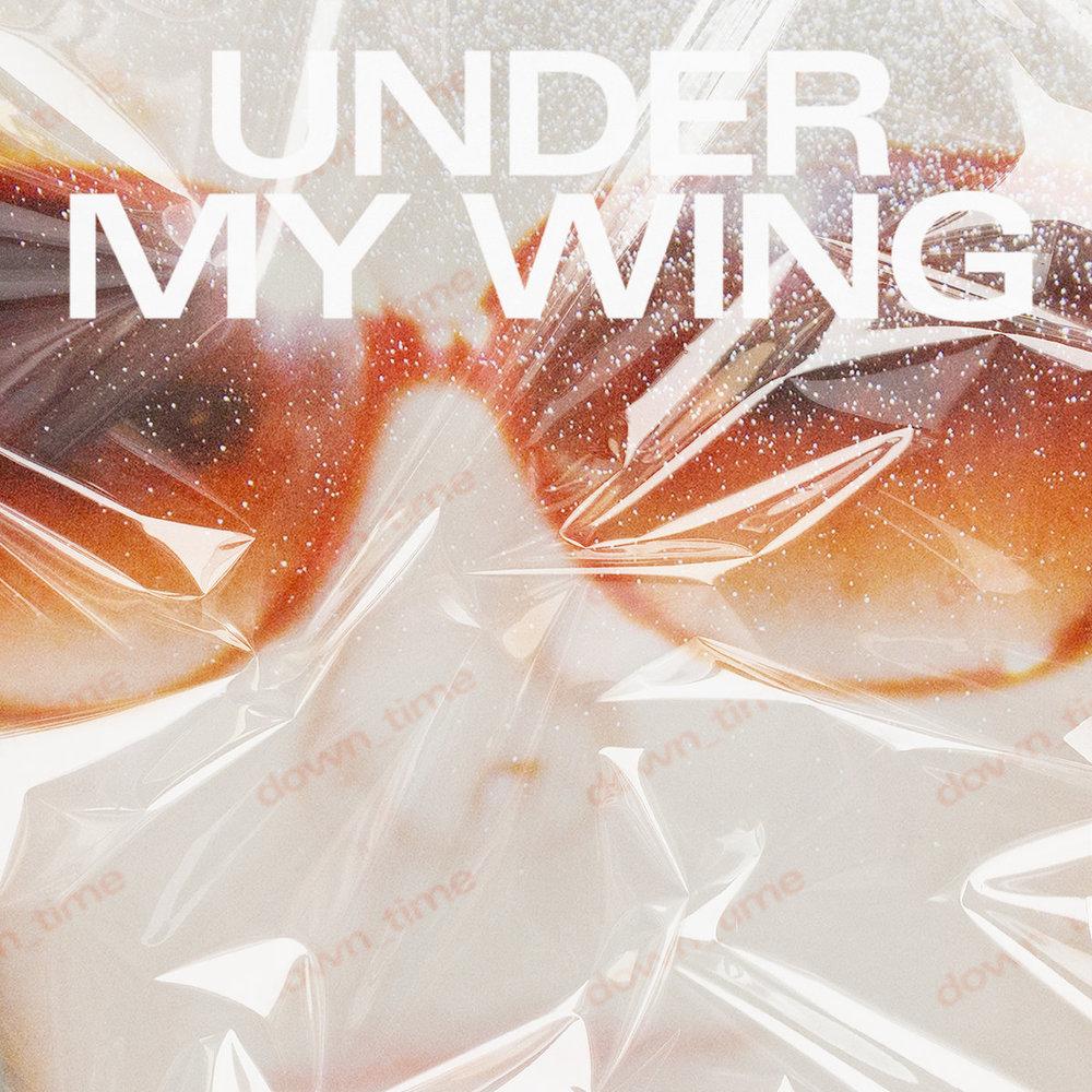 under my wing (yg).jpg