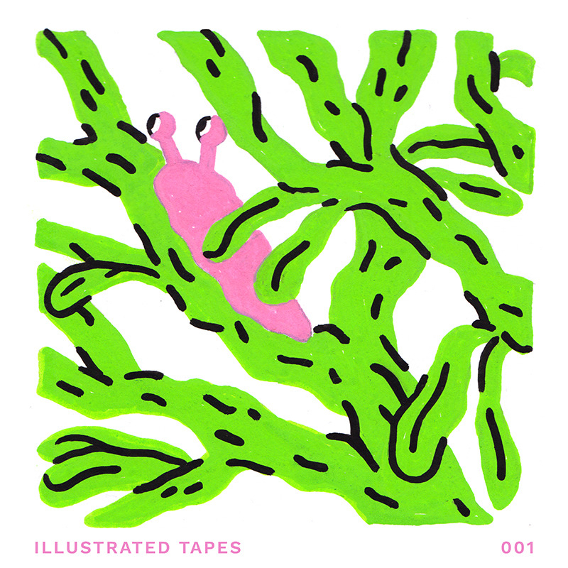 Illustrated Tapes 001.jpg