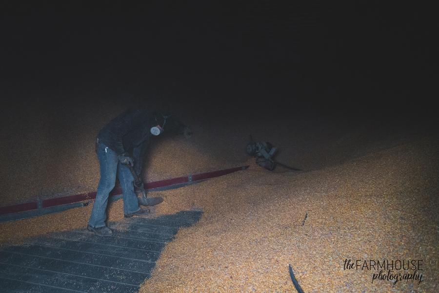 scooping corn farmer