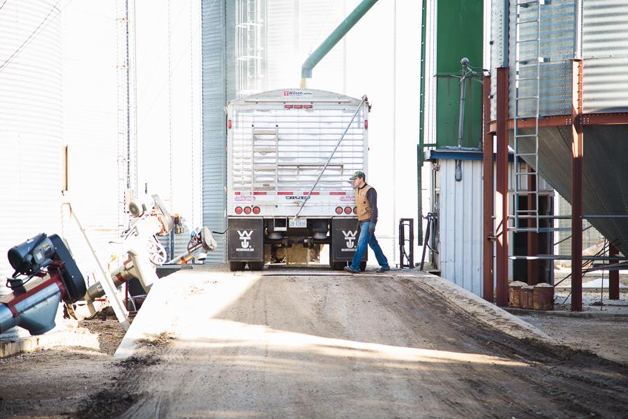hauling corn