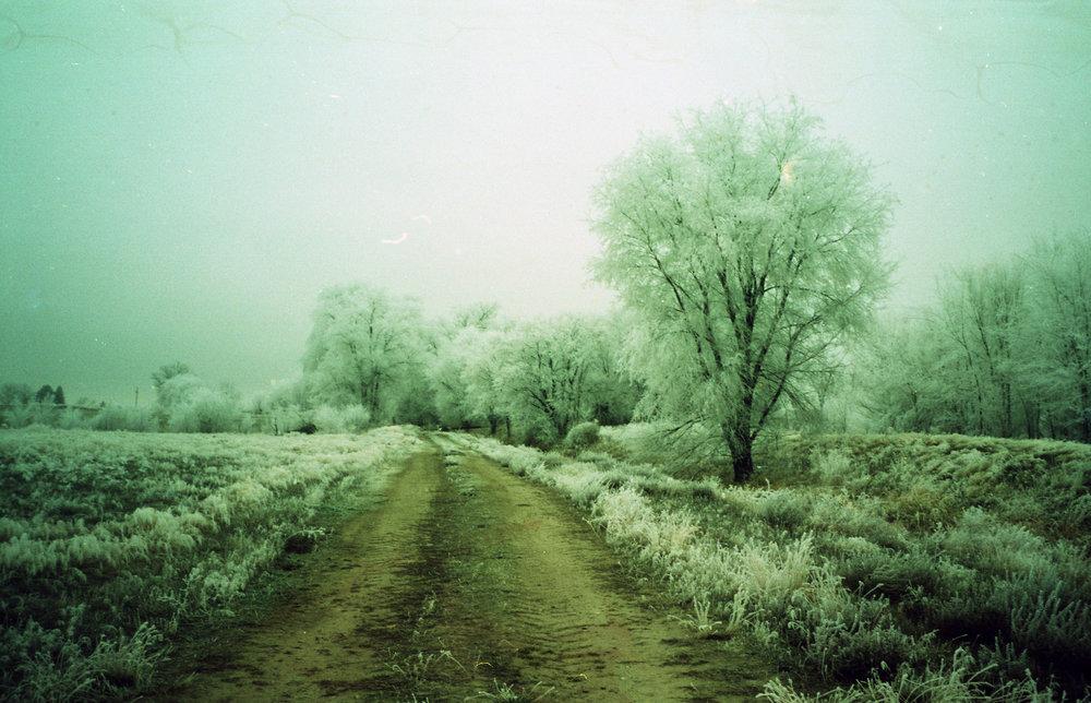 the frozen brick road.jpg