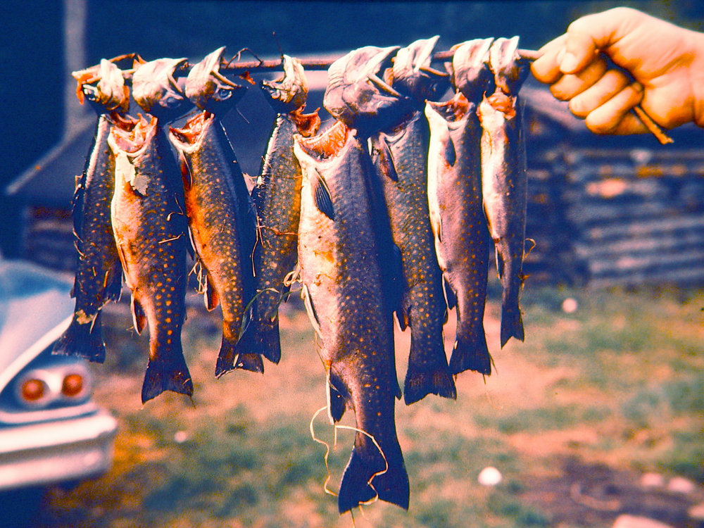 laurentian-mountains-fishing-1960s.jpg