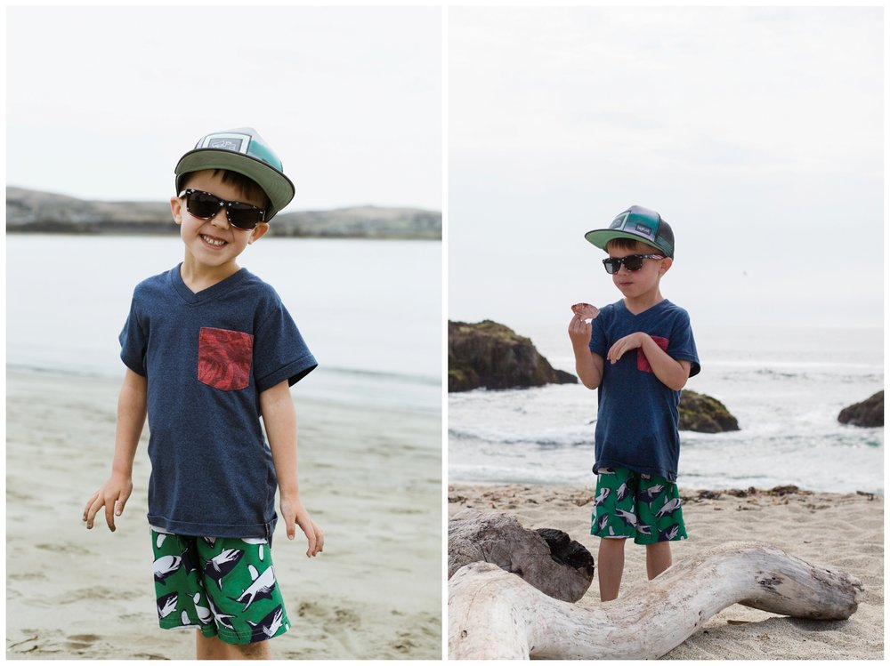 bodega bay-beach-ocean-goodforkids