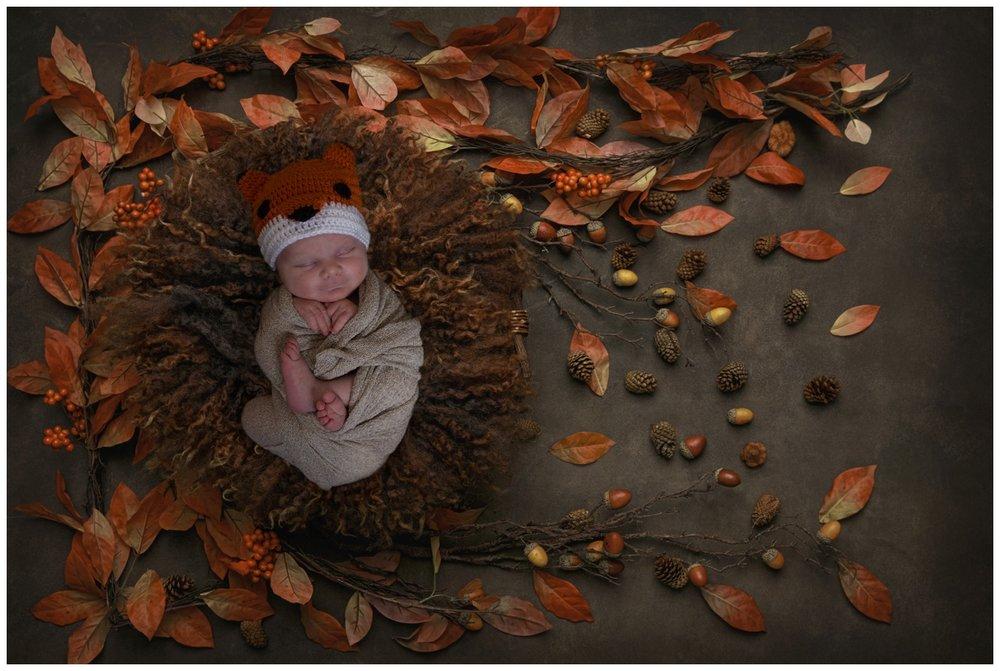 baby casey fox composite fall image newborn Kristi Gayton photography