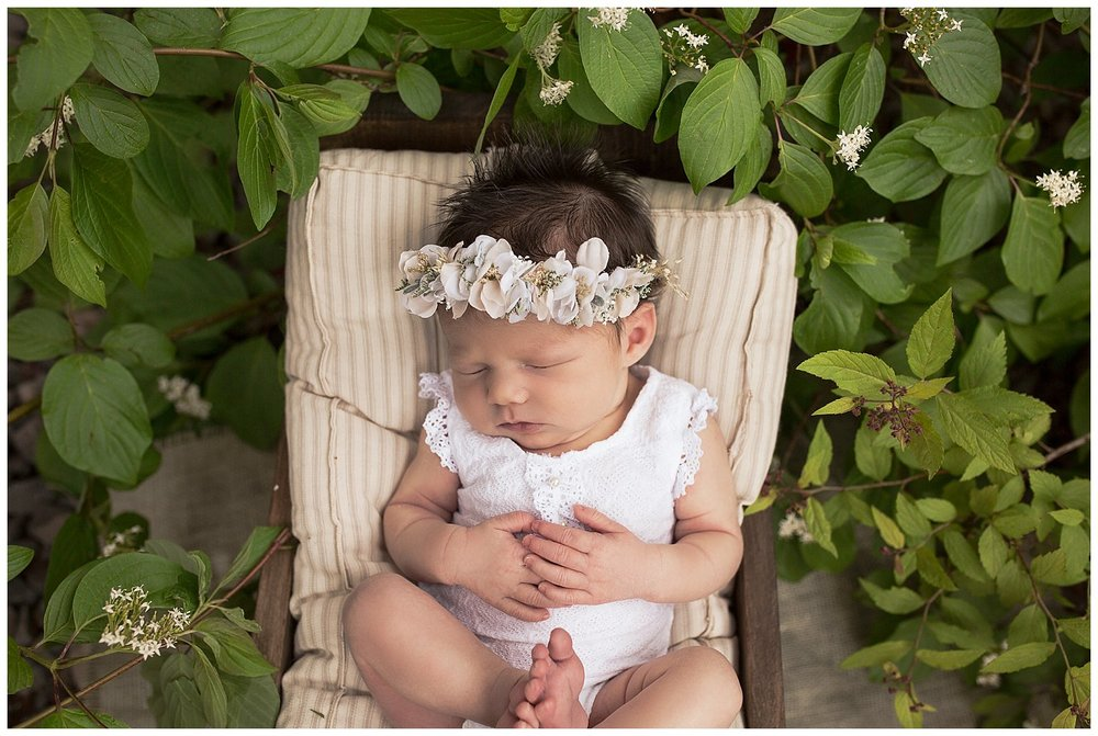 outdoor newborn photography baby girl in greenery