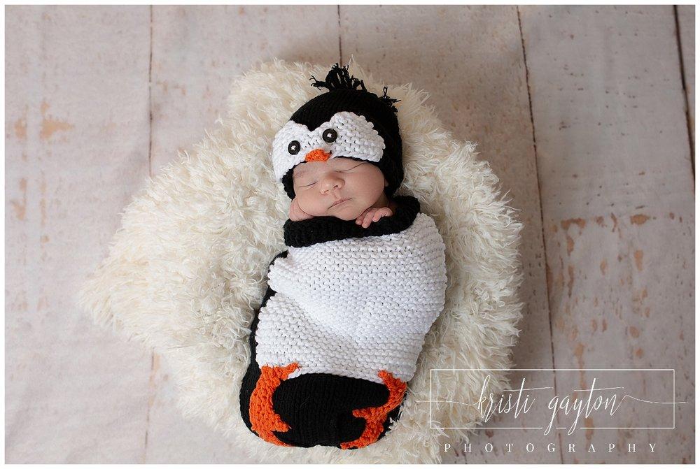 newbornpenguinkristigaytonphotography