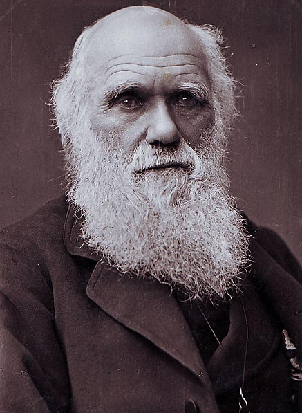 (image from Wikipedia) CHARLES DARWIN:   Rose at 8 am, had breakfast and a short walk. Focused on work for 90 minutes.