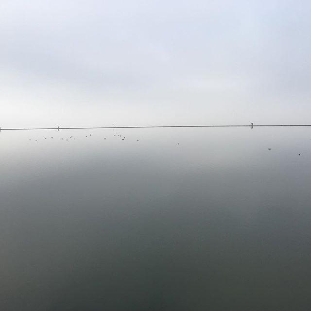 Misty morning #iphonese #riverdee #wirral #zen