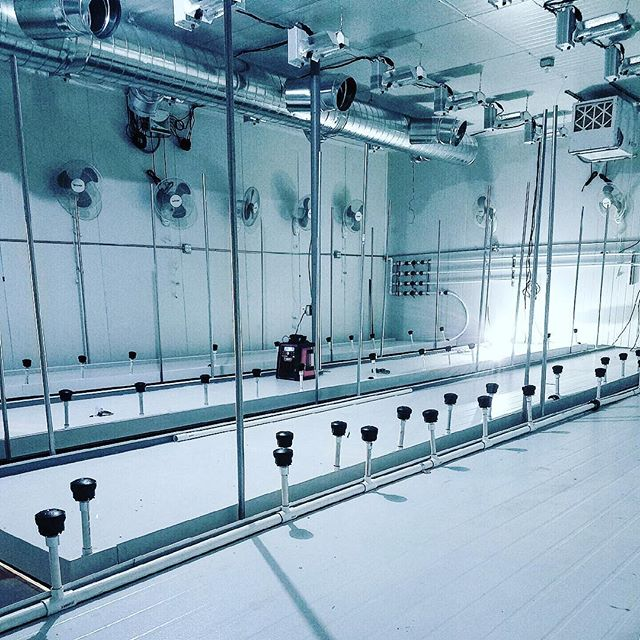 \\\ CANNA PANELS /// •FDA  APPROVED • NO VOC OFF-GASSING• FASTEST  INSTALL• NON ABSORBENT• CA APPROVED • TITLE 24 COMPLIANT •  RECOVERABLE Who wants to grow in this tricked out Canna Panels room? One lucky grower will soon thanks to @thecannabis_machine who's sick workmanship is featured here . We wish we could tell what famous Cannabis Industry  pioneer chose Canna Panels as their building material of choice for their walls , ceilings , and even Tray System but you'll have to wait for the High Times article and they can tell you themselves. #CannaPanels #Growerswhoknow #growroom #gamechanger #losangeles #cannabis #cultivation #horticulture #growop #growroom #cultivationfacility #wherethemagichappens  #medicalmarijuana #mmj #420 #dablife #westcoastbestcoast #oceangrown #medicalcannabis #neverstopgrowing #imaginethepossibilities #cannapanels