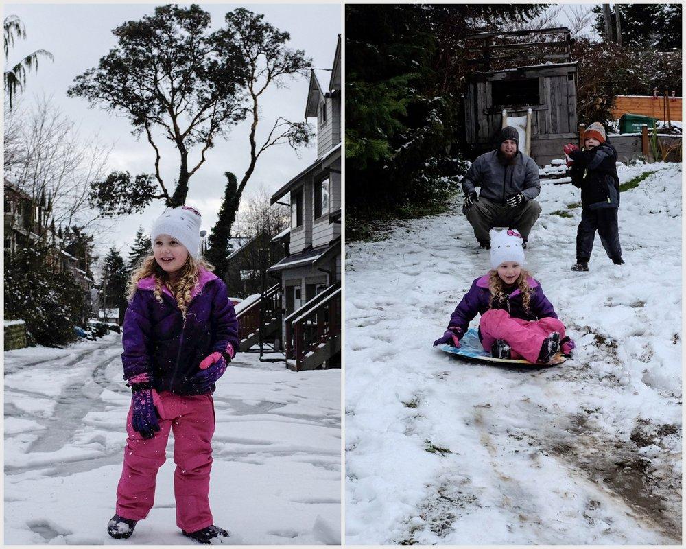 Snow 2016.jpg