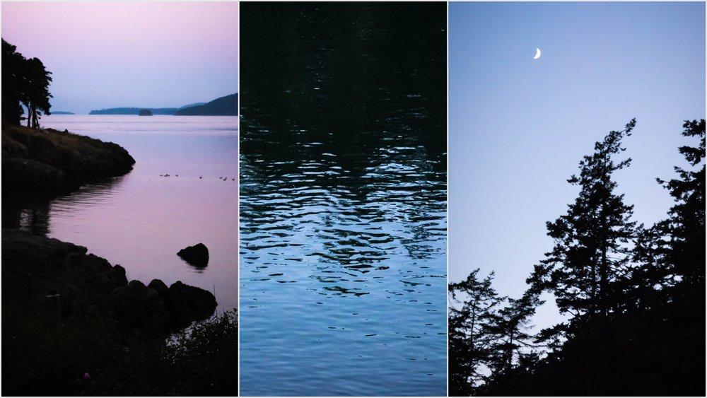 Orcas Island Nature Bliss5.jpg