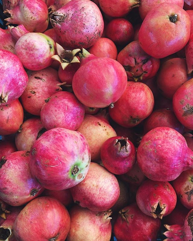 These gorgeous pomegranates almost look like watercolors. 💕#f52grams #cagrown #ofthedirt #dspink