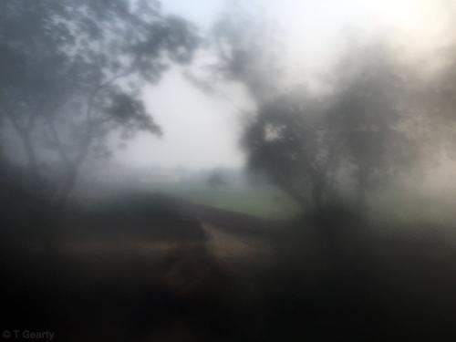 Agra Train #978