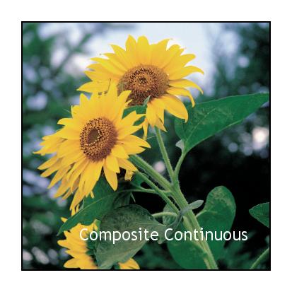Composite Continuous.png