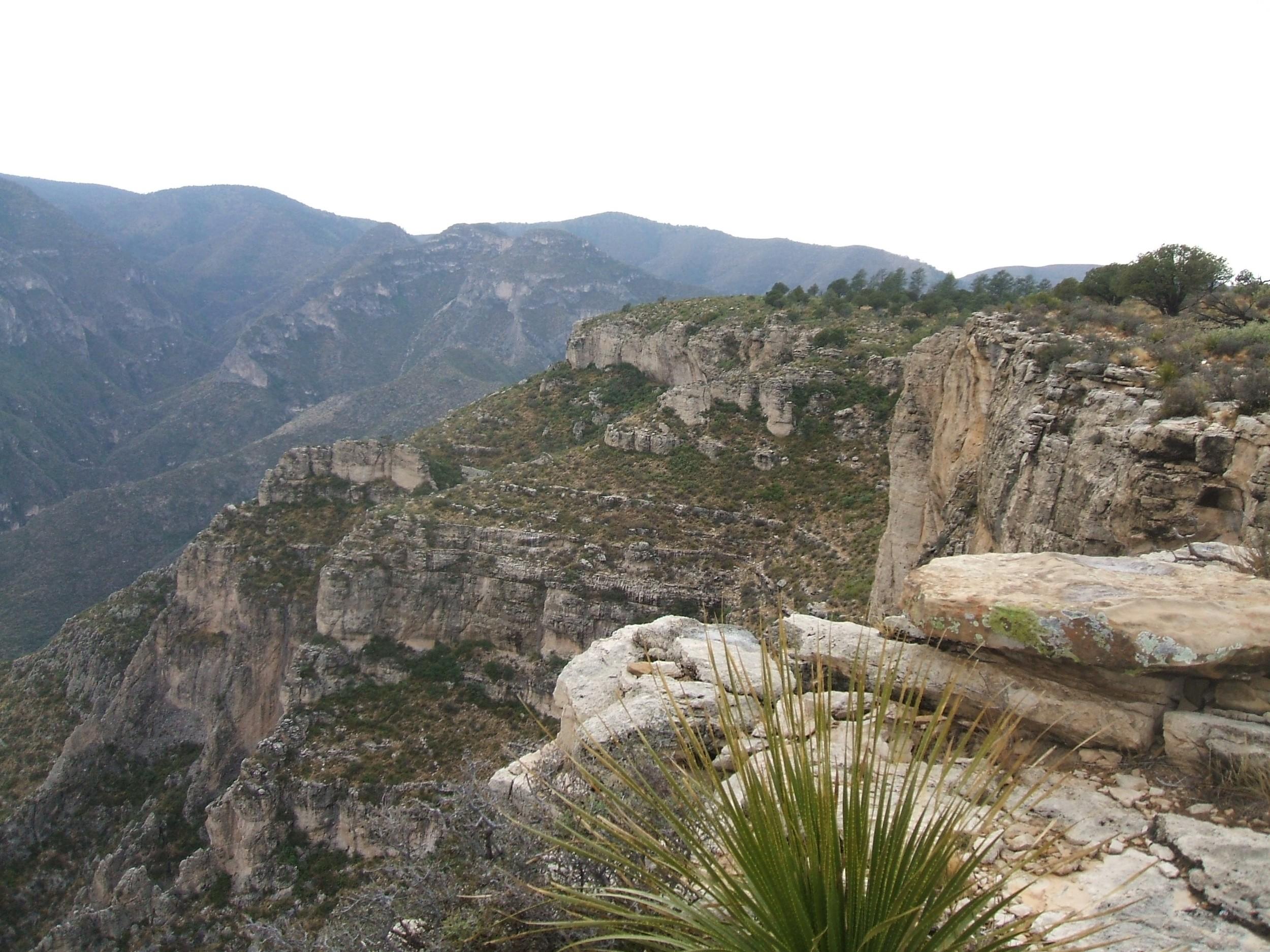 Wilderness Ridge 2008 (4)