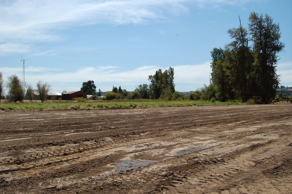 July begins work with dozers and scrappers to contour land for wetland.