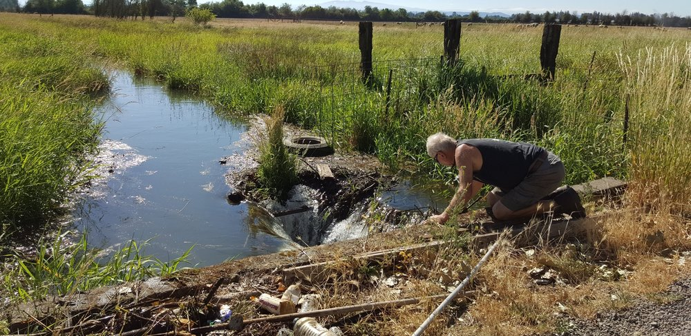 Fishing out tons of garbage thrown into ditch, finding its way to the irrigation canal.