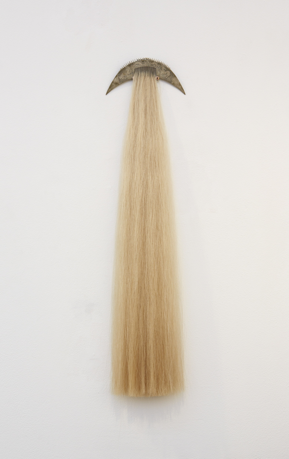 Anne graham, comb, photograph, 2012