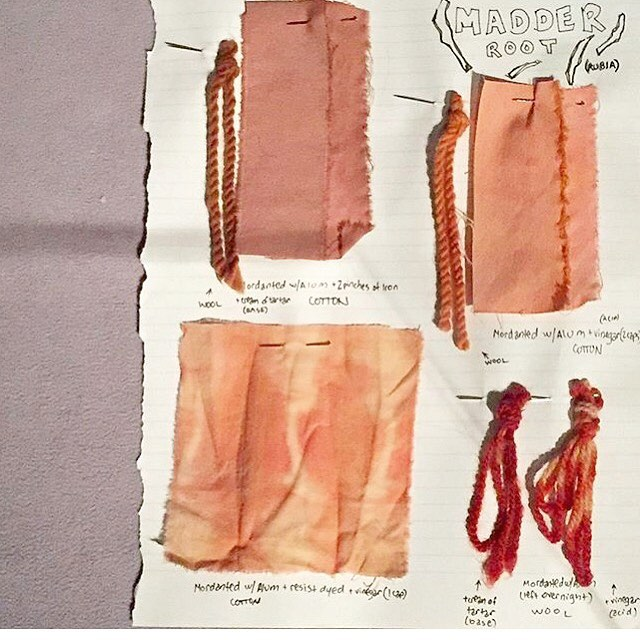 What's the #madder / a page from our #dyebook on display at @museumatfit Force of Nature exhibit / #naturaldye #naturallydyed #museumatfit #plantpigment #sketchbook #textilelove #plantdye #fiberhousecollective