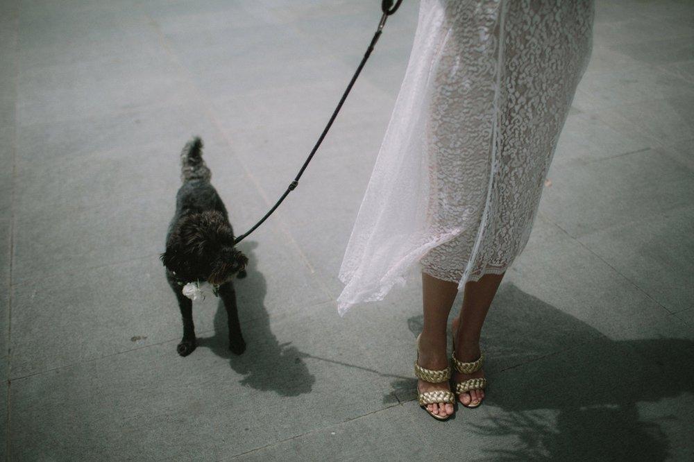 I-Got-You-Babe-Weddings-Heide-Museum-of-Art-Lizzi-Gerry018.jpg
