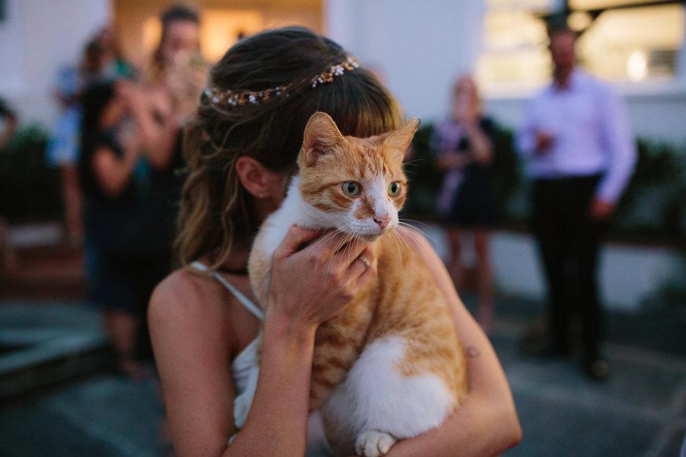 I-Got-You-Babe-Weddings-Sarah-Nick-Devonport-NZ0112.JPG
