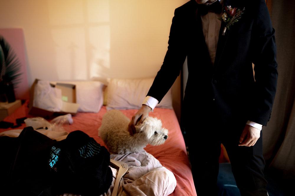 I-Got-You-Babe-and-Co.-Megan-Andrew-Ballarat-Wedding0013.JPG