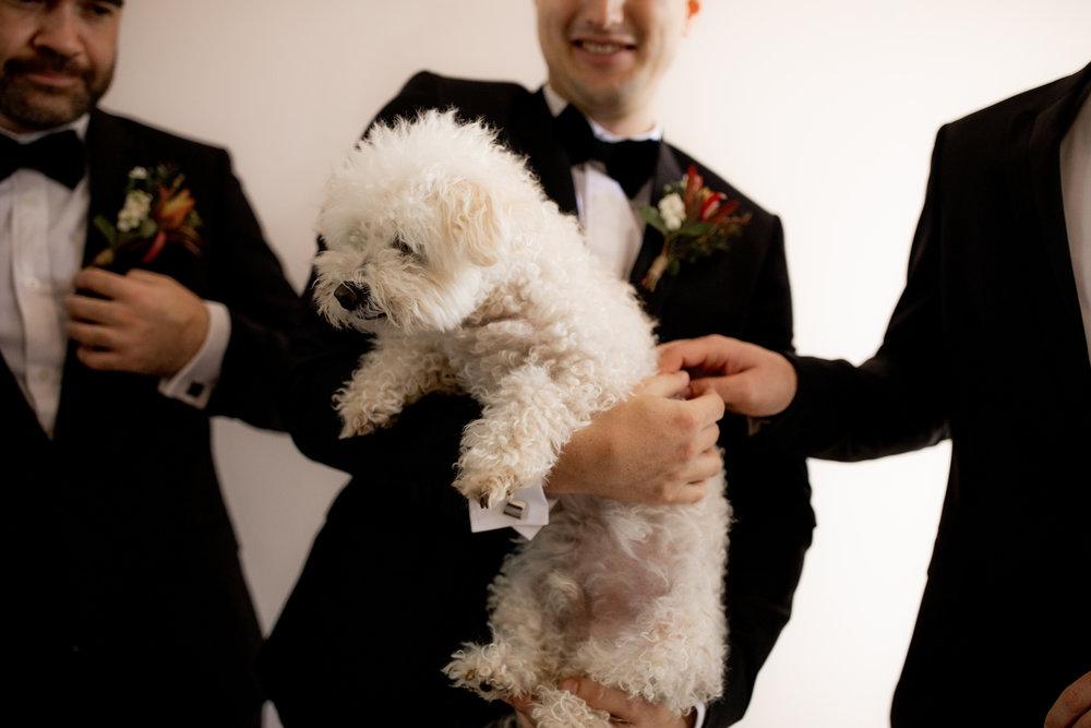I-Got-You-Babe-and-Co.-Megan-Andrew-Ballarat-Wedding0016.JPG