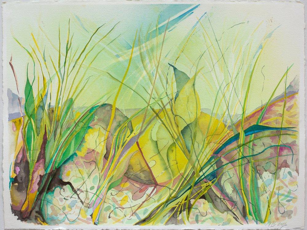 Day Break on Grasses