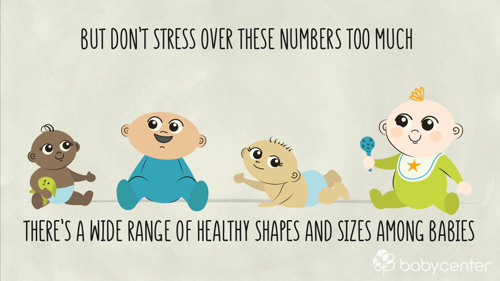 babycenter-baby-growth-animation-healthy-shapes.jpg