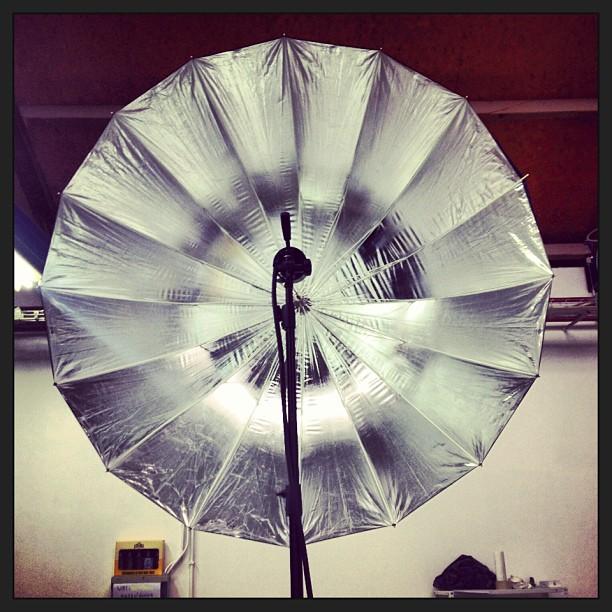 Achter de lens staan op zondag, 't is eens iets anders #thebirdproject