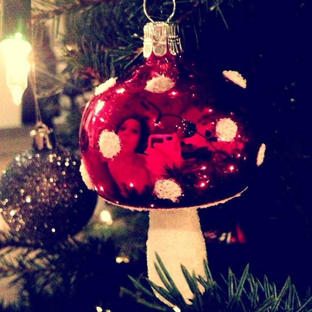Om mijn 1000ste Instagramfoto te vieren heb ik mezelf geportretteerd in de paddenstoelkerstbal in mijn kerstboom #omdathetkan (at Clap, Bux, Lando & Amoo's huis)