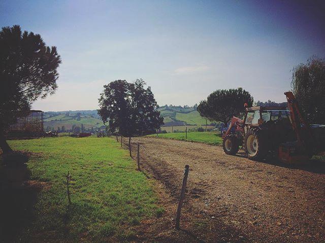 Visite de bon matin: ça bosse déjà dur chez nos éleveurs! #workhard #agriculture #professioneleveur #madeinfrance #doucefrance #instadaily