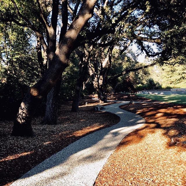 Little walkway under benevolent shadows - work in progress in Northcal - ppfgoujonarchitectes with @holocene_design , interior design #landscape #modernlandscape #landscaping #contemporarylandscaping #zen #shadows #oak #lovnorthcal #benevolentshadows