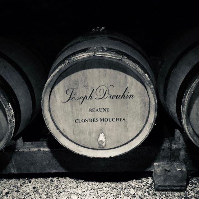 Close encounter of the pinot noir kind :-) #winelover #burgundy #bourgogne #pinotnoir #beaune #drouhin #closdesmouches #bandw