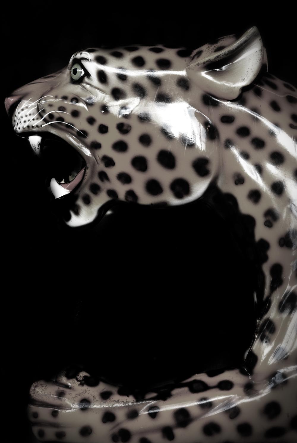 JaguarRoar_3455.jpg