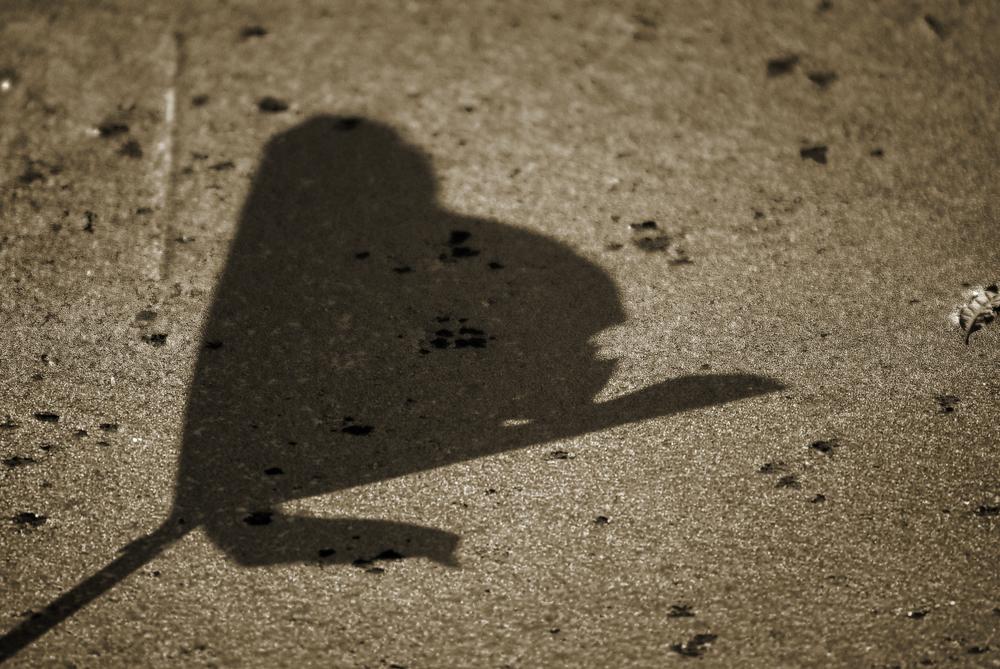 DuckWeedShadow.jpg