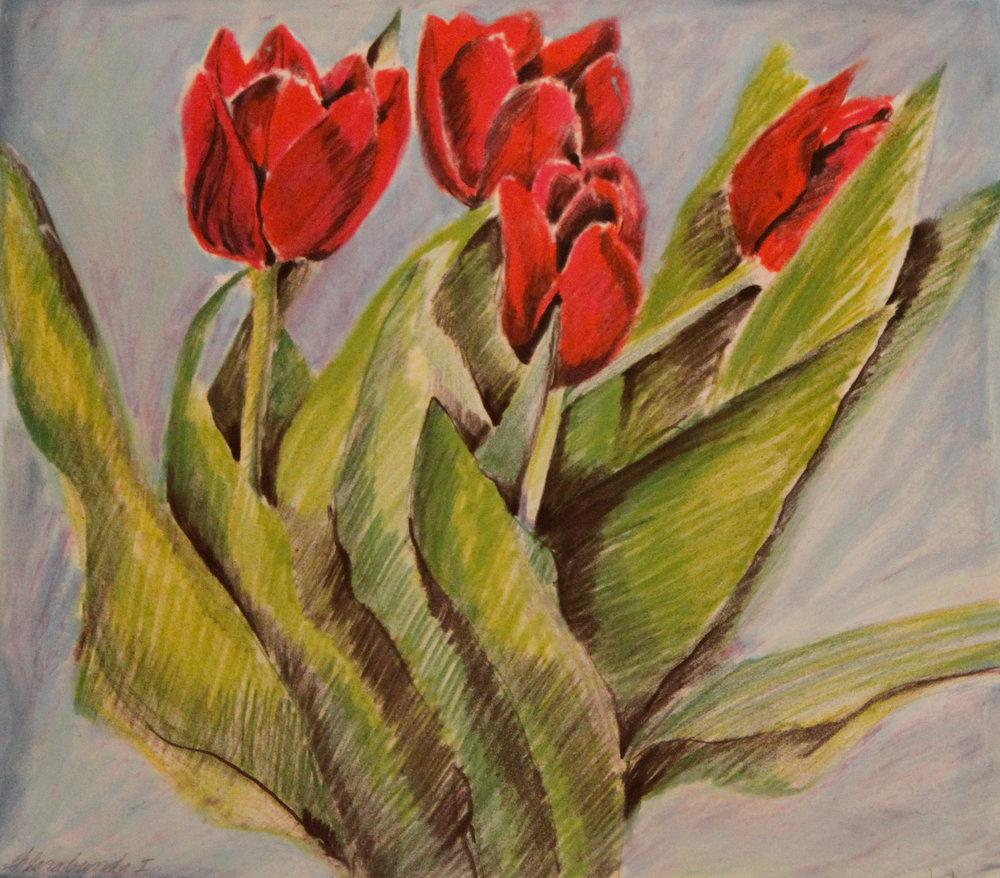 Florabunda 1 Tulips out
