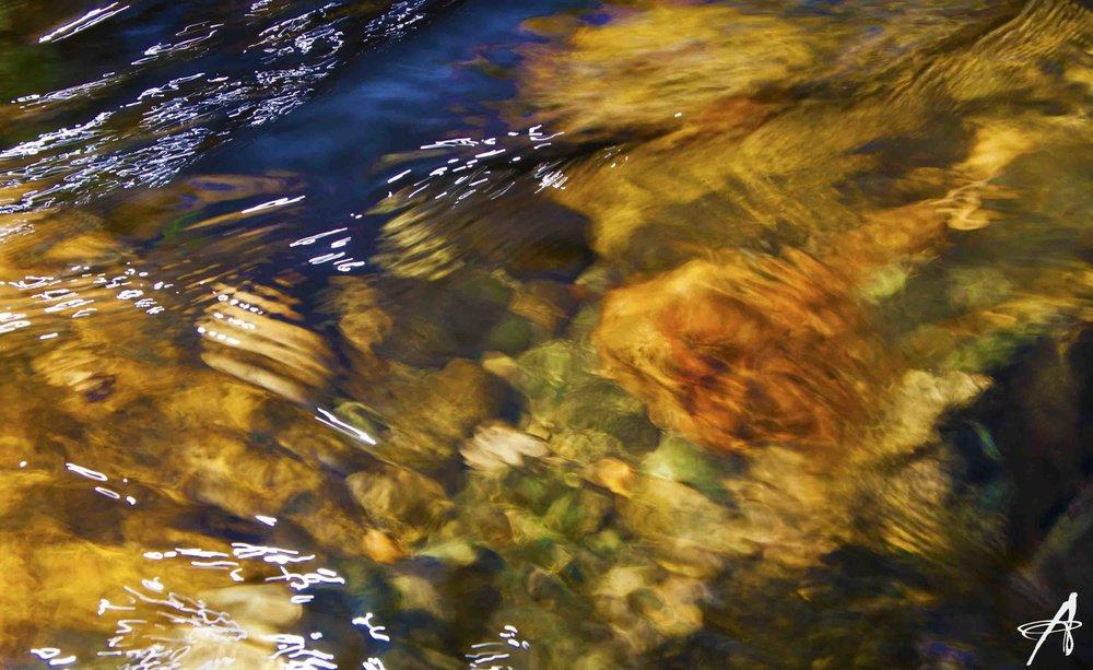 IMG_0752.2 watermark.jpg