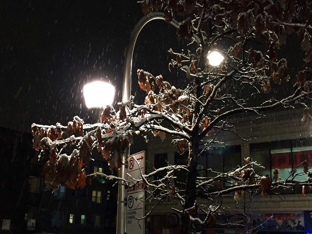 First-Snowfall-3.jpg