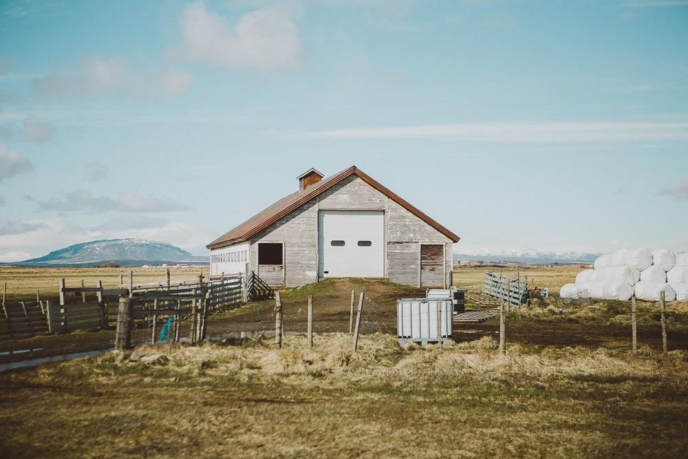 reykjavik-iceland-kelley-raye-atlanta-destination-wedding-elopement-photographer-28.jpg