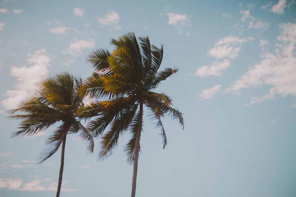 puerto-rico-kelley-raye-destination-wedding-photographer-16.jpg