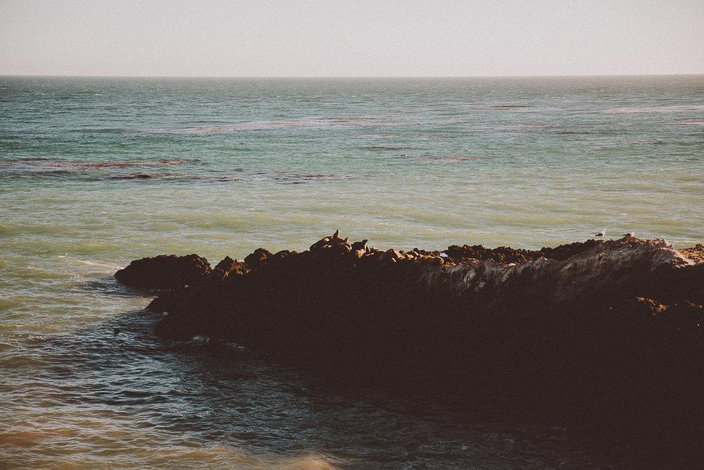 rachelle-dominic-malibu-beach-engagement-kelley-raye-los-angeles-wedding-photographer-2.jpg