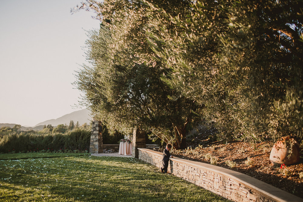 bradbury-california-winery-kelley-raye-los-angeles-wedding-photographer-110.jpg