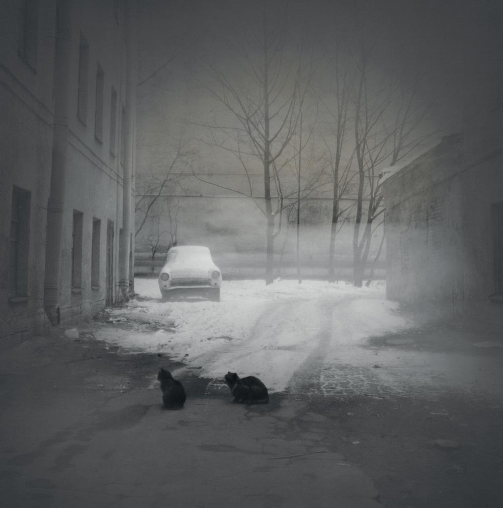 Black cats, 1997