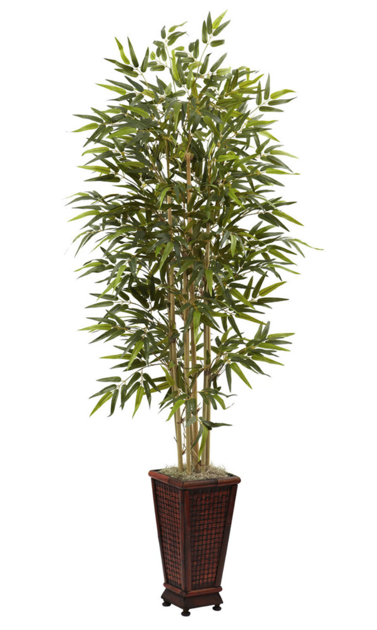 Bamboo Tree w/Decorative Planter