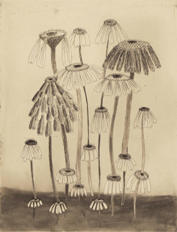 Variety Flowers II, 2014
