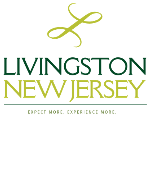 LIVINGSTON TOWNSHIP