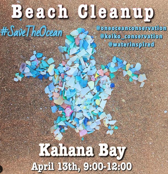kahana cleanup graphic.png